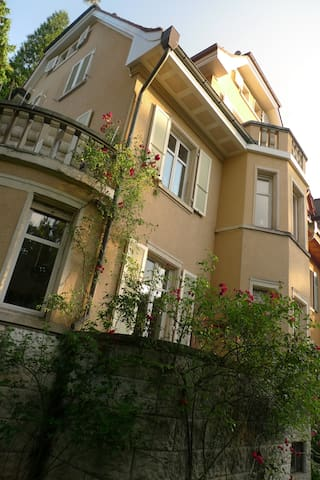 Charming house with small garden - Basel - House