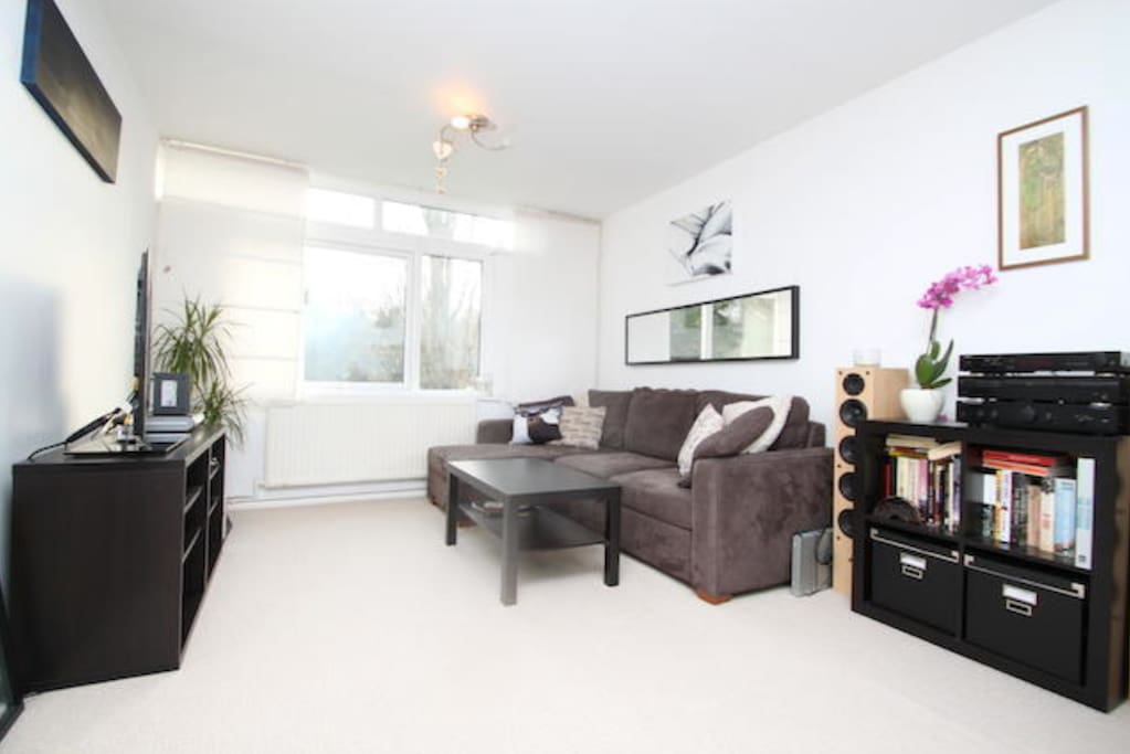 spacious living area with double sofa bed