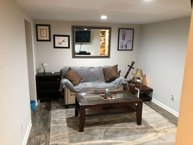 PHILS COOL COMFY Newly renovated spacious 1BR apt