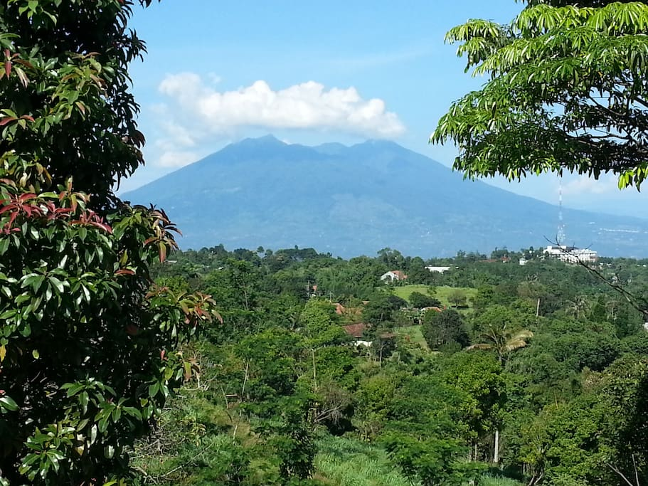 Mount Salak view from Danny Farm