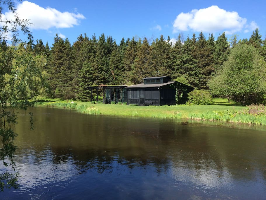 The lovely peace and quiet of out Pond House view of the whole!
