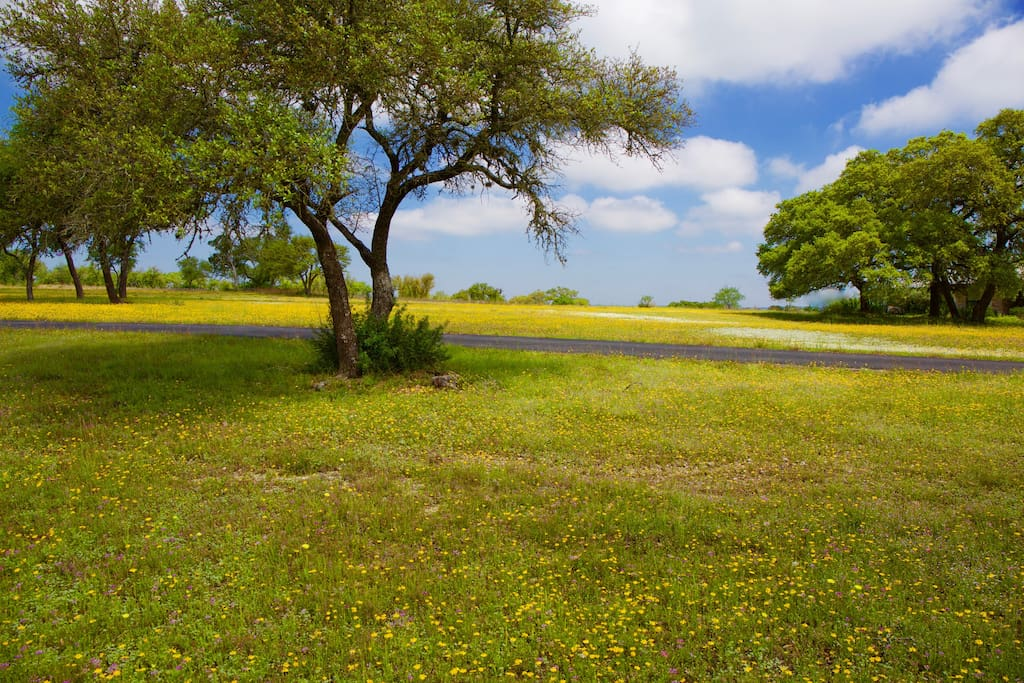 Beautiful Hill Country view in the spring