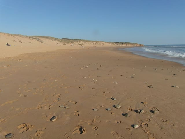 Magnifique plage du Veillon et Pointe du Payré