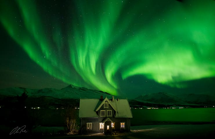 Historical house at the fjord under northern light - Laksvatn