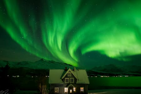 Historical house at the fjord under northern light - Laksvatn - 一軒家
