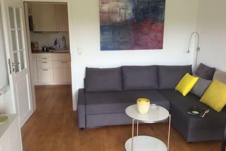 Sehr schöne strandnahe Wohnung - Wyk auf Föhr - Condominium