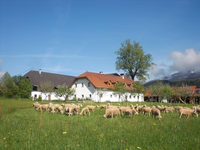 Farmholidays WALBAUER - Pichl - Casa