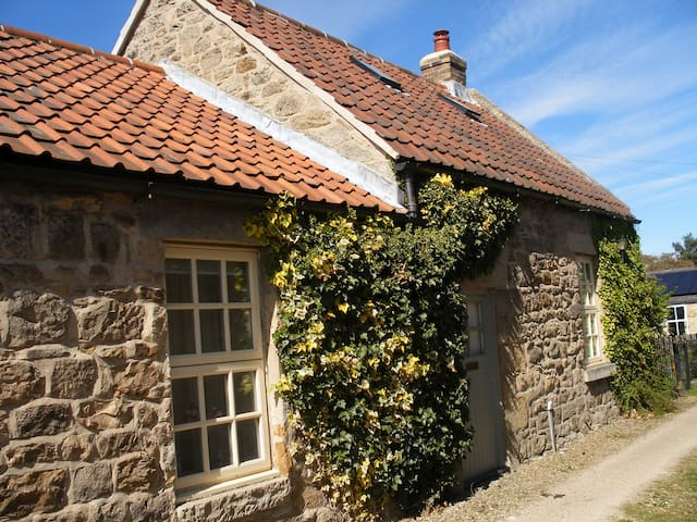 Listed grade II cozy cottage - Ovington - Penzion (B&B)