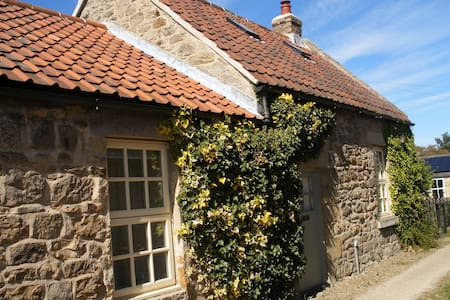 Listed grade II cozy cottage - Ovington