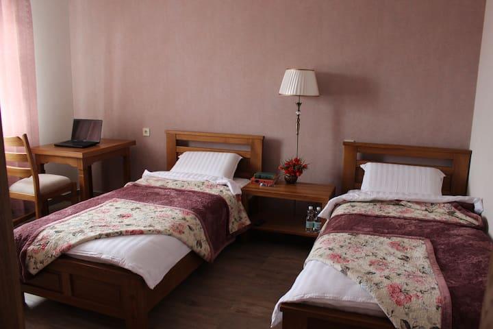 Номер Twin 32 м2 в гостевом доме Barin House. - Sumy - Bed & Breakfast
