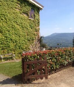 Fantastica villa immersa nel verde - Sant'Agata Dé Goti - Villa - 1
