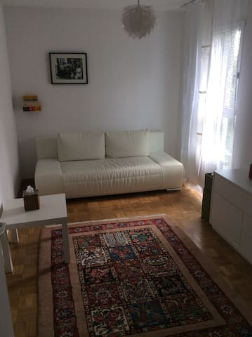Nice room in well situated flat. - Zürich - Apartment