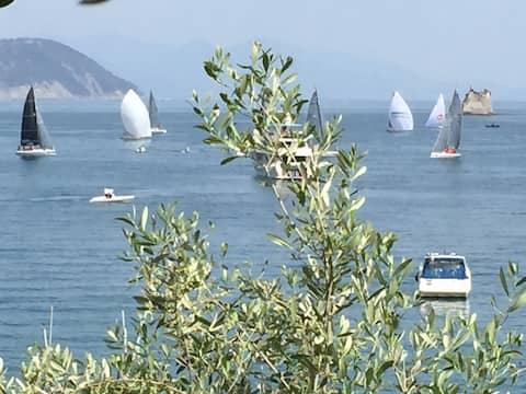"""What a View! "" Free Parking WifiAC 011022-LT-0179"