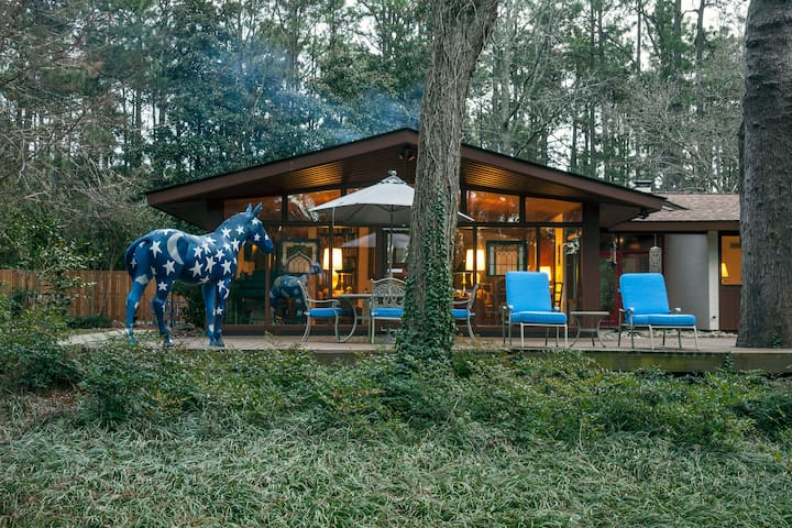 Very Cool Mid-Century Modern Home  - Southern Pines - Casa