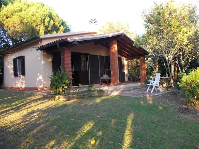 Terme di Saturnia  Maremma Toscana - San Martino sul Fiora - House