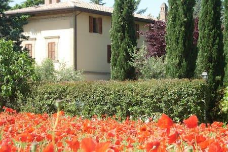 La Giara B&B Campagna di Assisi - Assise