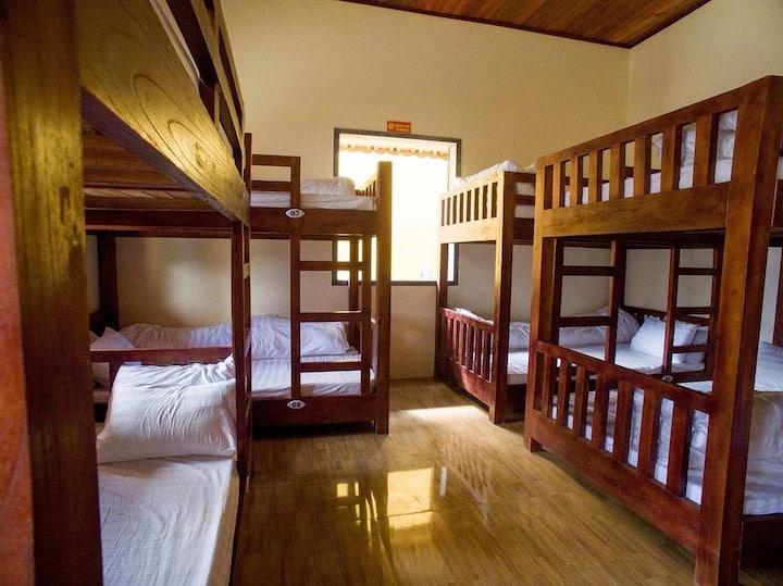 Giường tầng kí túc xá gồm bữa ăn sáng