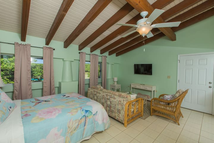 """HBH Eucalyptus Studio > Spacious bedroom & sitting area > Island views - quiet & comfortable > Large couch (queen-size pull-out) > 40"""" LED Wifi/Smart TV"""