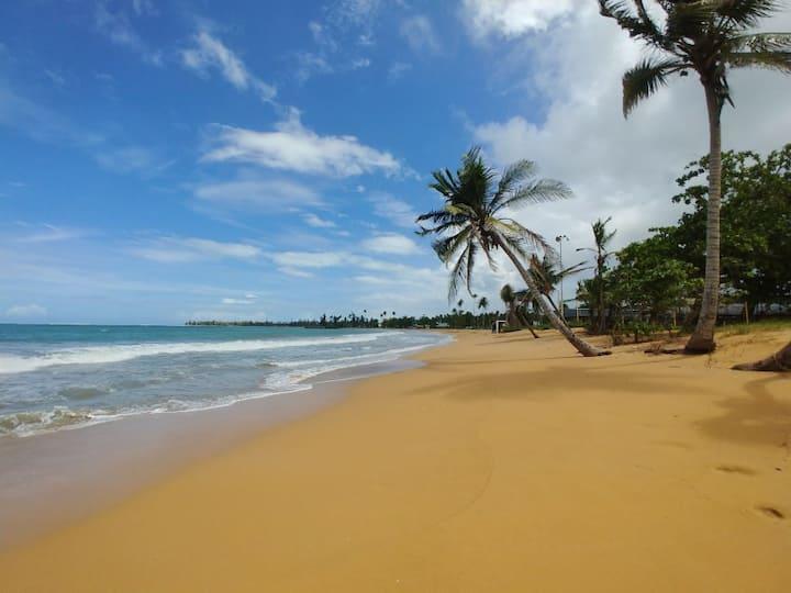 Villa Diego @ Rio Mar Wyndham Resort*