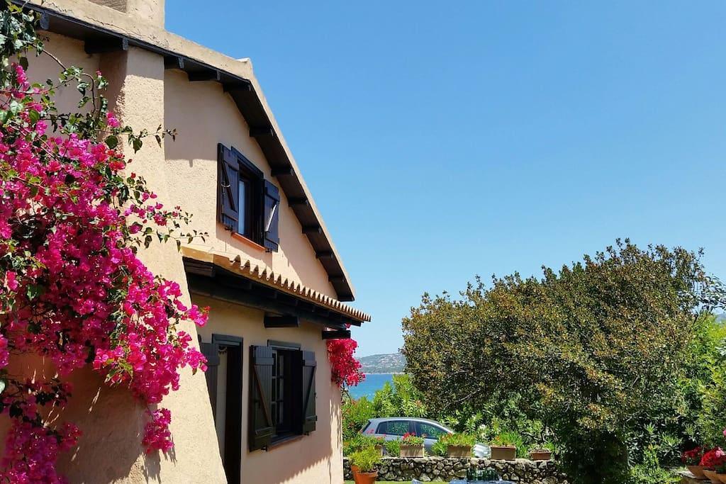 Casa frontemare con giardino case in affitto a cannigione sardegna italia - Casa con giardino milano ...