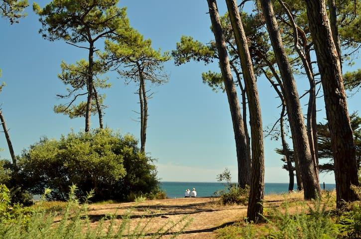 Maison bord de mer et sous les pins - Jard-sur-Mer - Hus