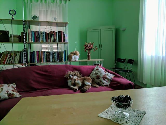 Ampia stanza in casa liberty