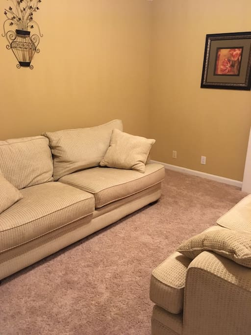 Front room with couch and love seat. There is now a flat screen TV in place of the picture that is hooked up to cable.