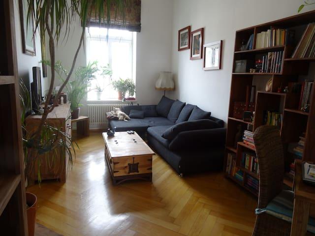3 Raum Wohnung. 90qm, Hell, Zentrum - Leipzig - Huoneisto