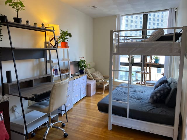 1BR Downtown Bos, A/C, free bikes, 4m to South Stn