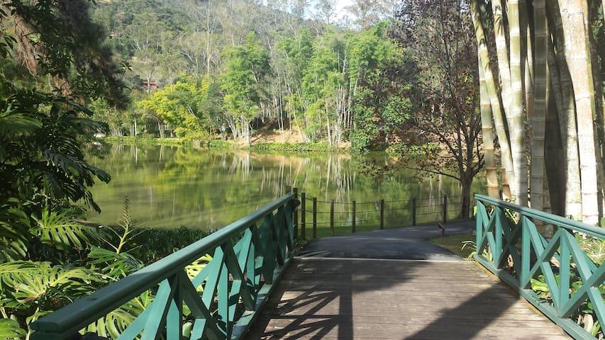 Vista para o lago do condomínio.