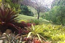 Jardins impecáveis.