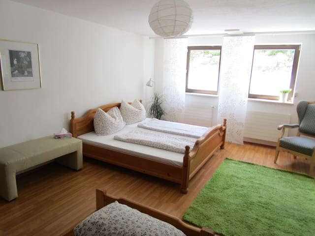 Big apartment 10min to Salzburg - Ainring - Daire