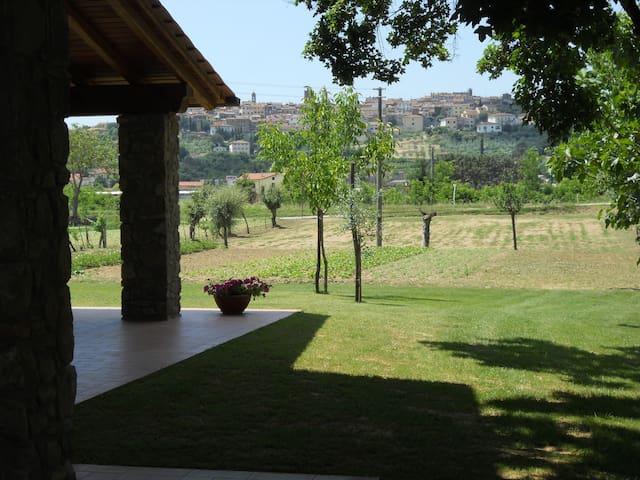 """B&B """"LA MACINE""""  - Monte San Savino - Bed & Breakfast"""