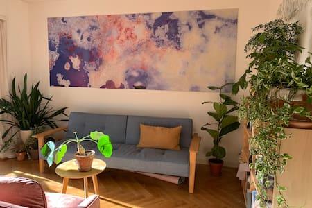 Appartement de charme au centre ville de Lausanne