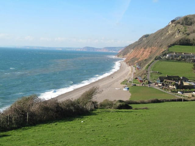 Branscombe Holiday Apartment - Branscombe - Daire