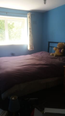 A nice large room to let large garden for female..