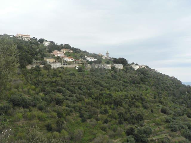 F1 dans un hameau très  calme début  de Cap Corse - Ville-di-Pietrabugno - Dům