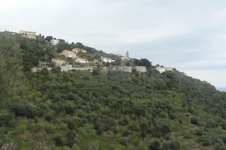 F1 dans un hameau très  calme début  de Cap Corse - House