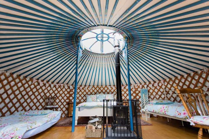 Mongolian Yurt in the heart of the Somerset Levels