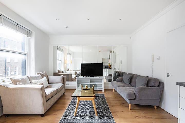 Stylish Apartment Central London