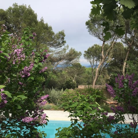 Belle Maison dans la pinède - Saint-Marcel-d'Ardèche - Casa