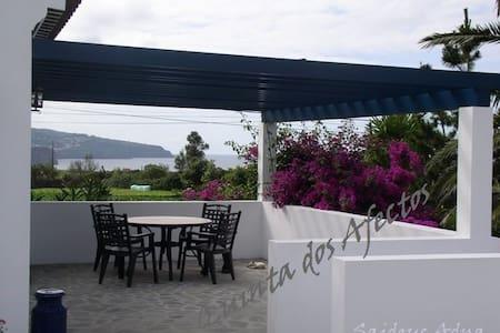 Quinta dos Afectos - casa típica - S. Vicente Ferreira