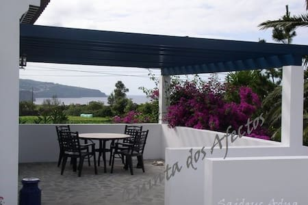 Quinta dos Afectos - casa típica - S. Vicente Ferreira - Dom