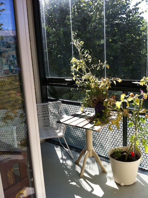 View of the balcony from the kitchen... with my somewhat worn out tomato plant
