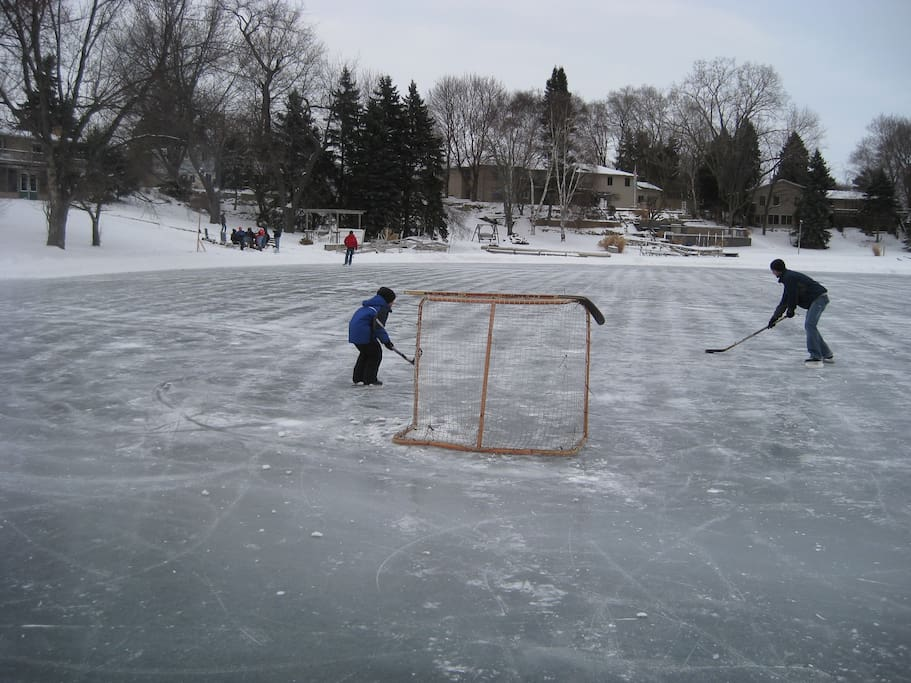 Winter view from the ice rink