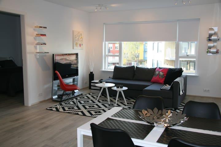 Luxury downtown apartment