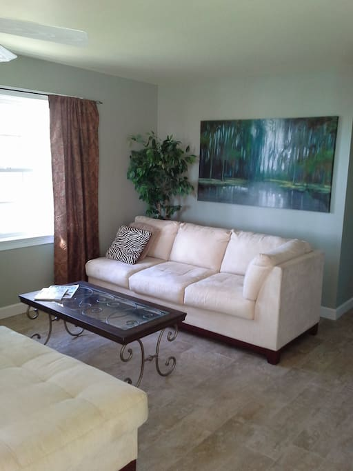 Two comfortable couches, living area
