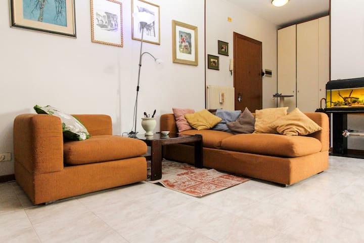 OH MY GOD!!!  MY HOME IS...YOUR'S ! - Ponzano Veneto - Apartment