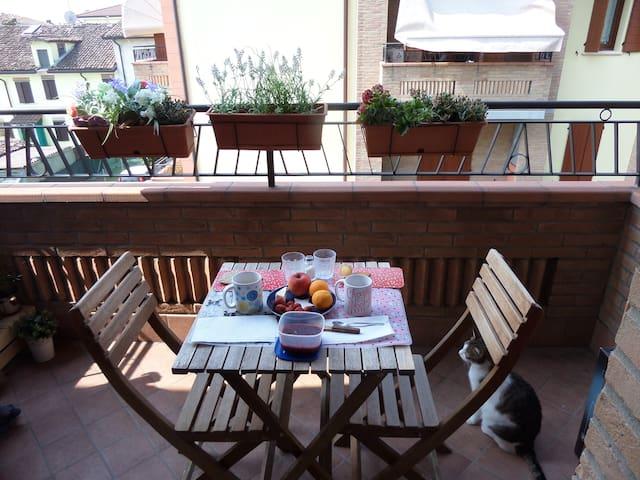 Appartamento a Carpi (Modena) - Carpi