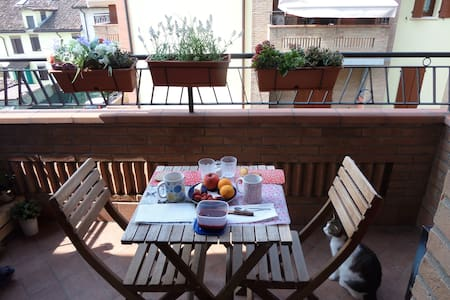Appartamento a Carpi (Modena) - Carpi - Leilighet